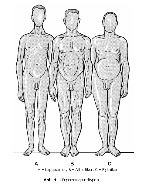 Leptosom 3 Tipe
